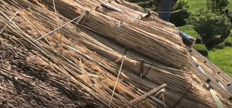 Video: Thatching in Cloonboo, with Marika Leen