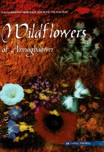 Wildflowers of Annaghdown cover